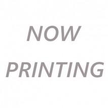RCC - Tokyo Marui USP 9mm Recoil Spring Set 70% & 130%